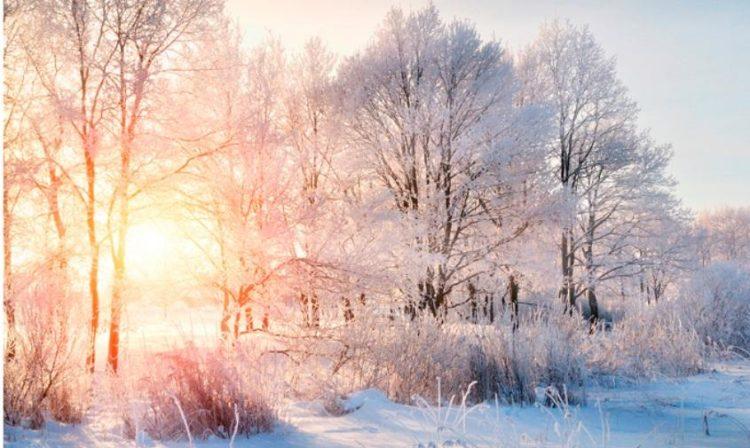 Мороз по коже: правила ухода за кожей в холода